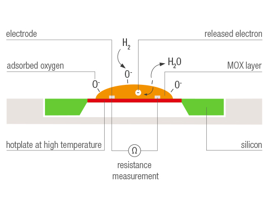 Global Metall und Metalloxid Nanopartikel Market